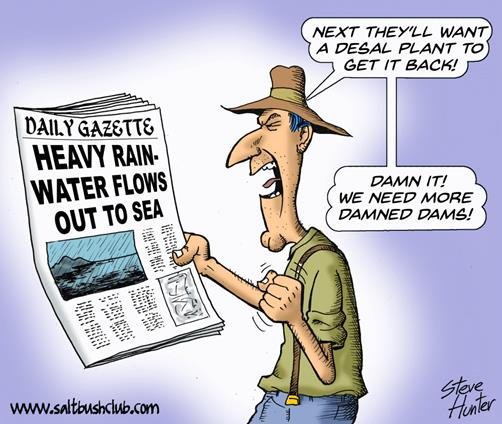 more dams cartoon
