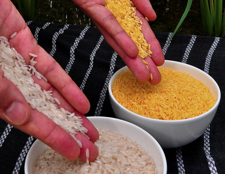 white and golden rice
