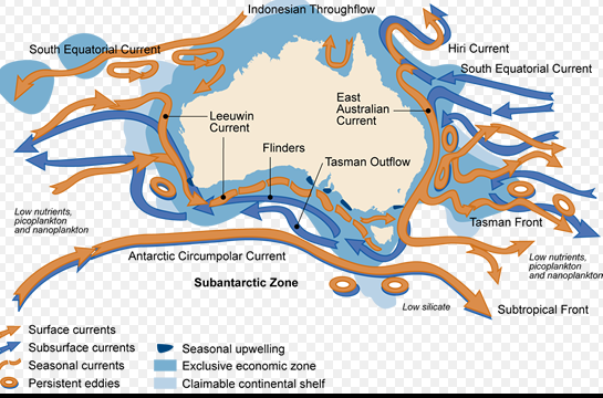 australian ocean currents